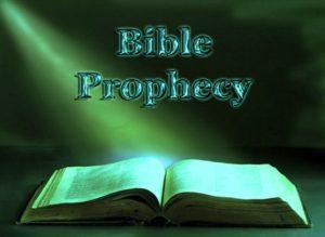 ALKITAB YANG HIDUP